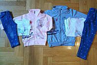 Трикотажный костюм-тройка для девочек  оптом, F&D, 1-5 лет., арт. 3657, фото 1