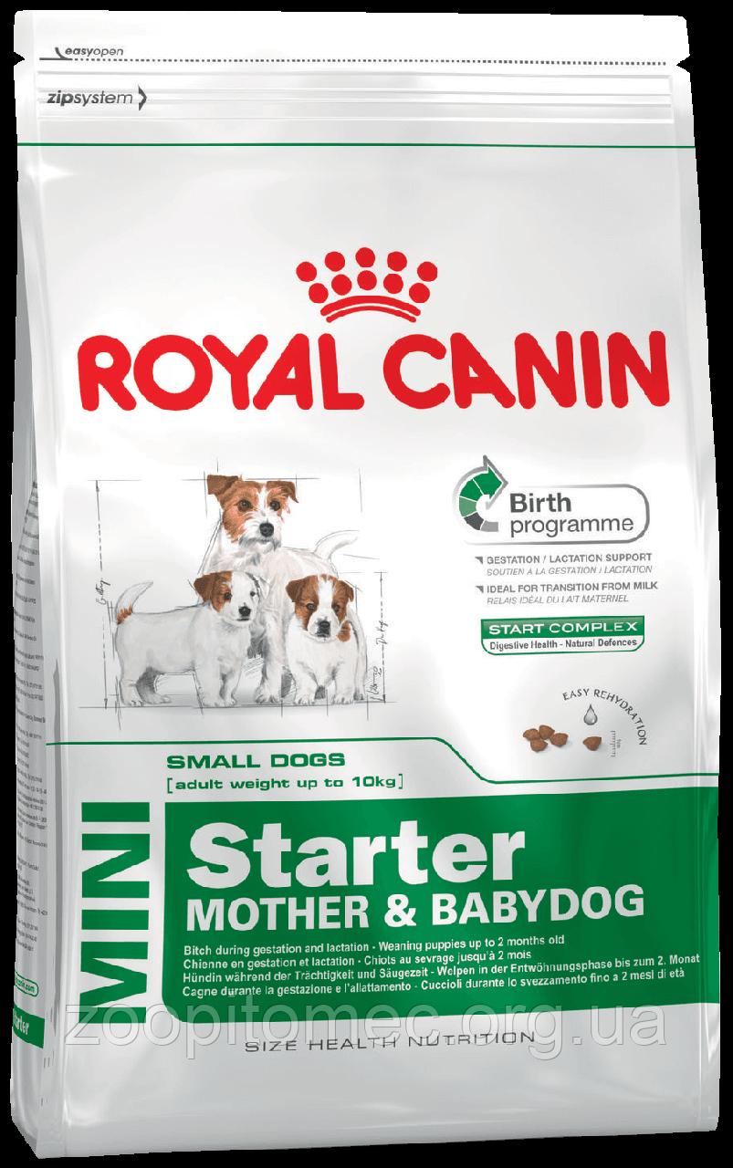 Сухой корм Royal Canin (Роял Канин) MINI STARTER для собак мелких пород (щенков, кормящих, беременных сук) 3 кг