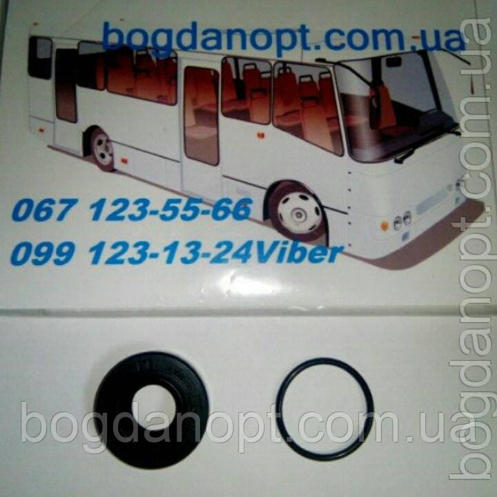 Сальник вакуумного насоса генератора автобус Богдан А-091,А-092,Исузу