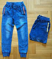 Брюки под джинс для мальчика оптом,F&D, 8-16 лет, № 5399