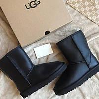 Угги женские short классические черные | Ugg Australia Short | Угги
