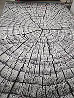 Ковёр Kolibri дерево в разрезе 2.00х3.00 м.