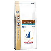Роял Канин Гастро интестинал Royal Canin Gastro intestinal moderate диета для кошек ЖКТ 2 кг
