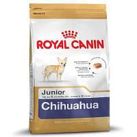 Корм для собак Royal Canin Chihuahua Junior (Роял Канин Чихуахуа юниор) 500 г