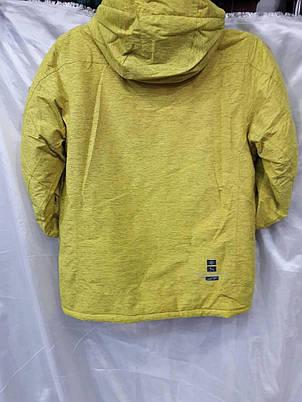 Куртка горнолыжная мужская Snow Headquarter Model: A-8187 Color: Yellow, фото 2