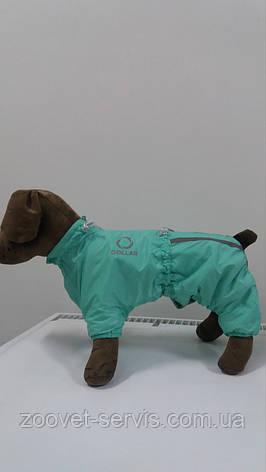 Комбинезон зимний Д 402 №2 для собакCollar Теремокментоловый, фото 2