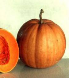 Семена тыквы  Гилея 1 кг
