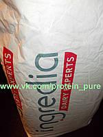 Казеин Ingredia 85% белка Оригинальный (Франция) пломбир