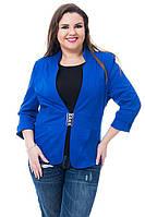 Жакет Эрика женский с пряжкой (05) электрик синий полу-батал, фото 1