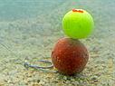 Texno EVA Balls 10mm white/orange, фото 2