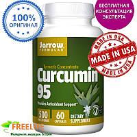 Jarrow Formulas, Куркумин 95, 500 мг, 60 вегетарианских капсул, купить, цена, отзывы
