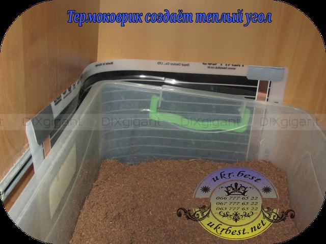 Термоковрик используется, чтобы создать нужную температуру, для жизни, роста и развития улиток - пример, как закрепить на террариуме и согнуть его, чтобы образовать теплый угол.