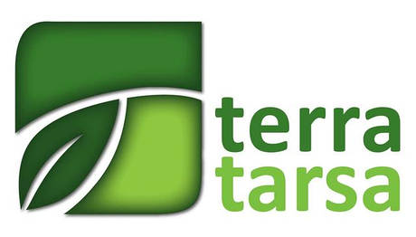 Terra Tarsa