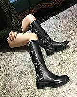 Стильные женские сапоги Dior