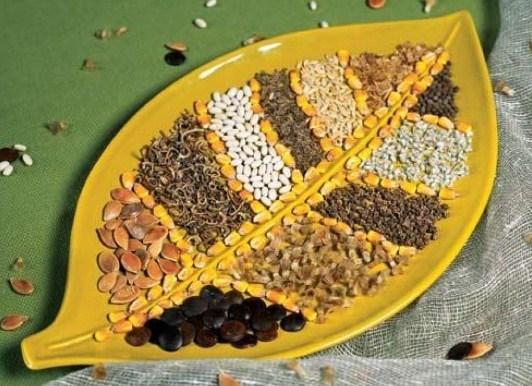 Способы протравливания семян