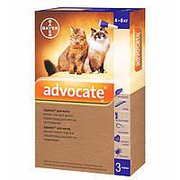 Капли на холку для котов от блох и глистов Bayer Advocat 4-8 кг (Байер Адвокат 1 пипетка)