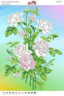 Білі троянди. СВ-3037 (А3). Часткова вишивка