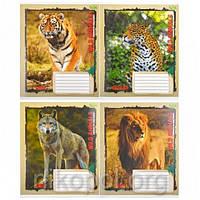 """Тетрадь цветная 18 листов линия, серия Green """"Wild Animals"""", белизна 98%, фото 1"""