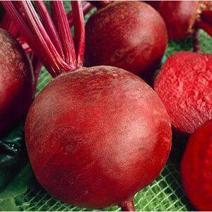 Семена свеклы Красный шар (Франция), 500 г — среднепоздняя сортовая (90-100 дней), круглая, столовая