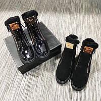Женские зимние ботинки на молниях Giuseppe Zanotti