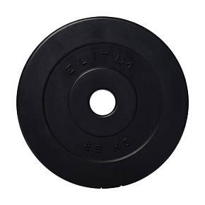 Гантели композитные Elitum 2 по 20 кг, фото 2