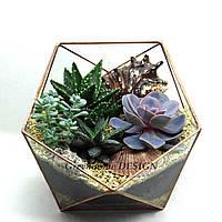 """Флорариум """"Икосаэдр"""" с живыми неприхотливыми растениями (суккулентами)-оригинальный подарок!"""