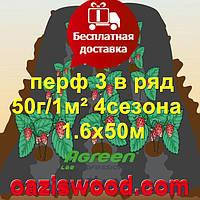 Агроволокно с перфорацией 3 в ряд p-50g 1.6*50м черное AGREEN 4сезона Итальянское качество
