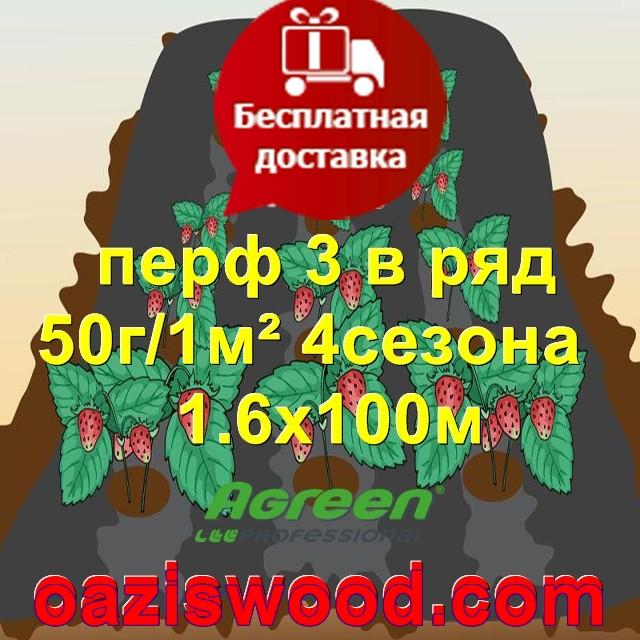 Агроволокно с перфорацией 3 в ряд p-50g 1.6*100м черное AGREEN 4сезона Итальянское качество
