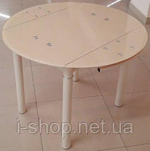 Стол обеденный BM/T-04D (DST-041), фото 2