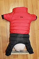 Одежда для собачки комбинезон  ТАКСА красный