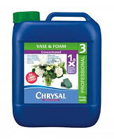 Chrysal Clear Professional 3