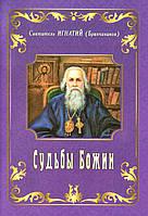 Судьбы Божии (Свт. Игнатий Брянчанинов)