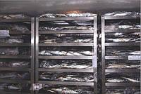 FINNCOLD Дефростеры для рыбы