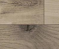 Ламинат, Kaindl, Master Floor Elegant, Дуб Фарко Тренд , Oak FARCO TREND, 32 Класс