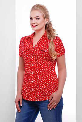 блузка GLEM блуза Якира-Б к/р