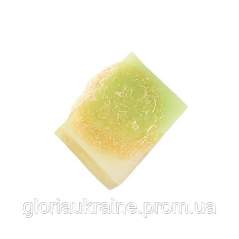 """Мыло с люфой """"Клевер и травяной чай"""" GLORIA 100г, фото 2"""