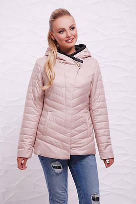 куртка GLEM Куртка 17-62