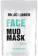 Mr.Scrubber Маска матирующая для лица - Mud mask Face Mattyfying, 150 г