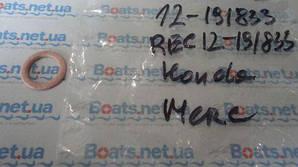 (09,3x14,0x1,2) REC12-191833 12-191833 307552 311598 PLUG GASKET