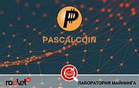 Криптовалюта PascalCoin (PASC)