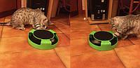 Поймай мышку Игрушки для котов Catch The Mouse