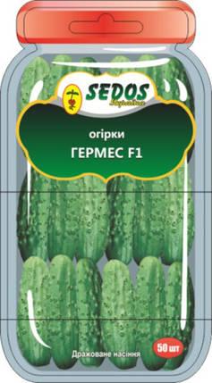 Семена огурца Гермес F1 50шт дражированные ТМ SEDOR, фото 2