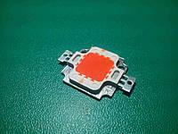 Светодиод 10 Вт красный, LED 10W, фото 1