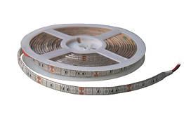 Светодиодная фитолента Lumex SMD 5050 (60 LED/m) IP54 Econom