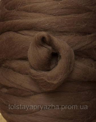 Шерсть меринос для вязания пледов, прядения, валяния №21 (темный верблюд), фото 2