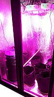 Гроубокс Led 390 с автоматическим капельным поливом, фото 1