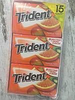 Блок жвачек TRIDENT Тропические фрукты, 210 жвачек