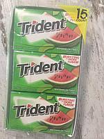 Блок жвачек TRIDENT Сочный арбуз, 210 жвачек