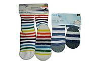 Носки для мальчика с тормозками, Lupilu, размеры  27/30(7шт), арт. Л-805,217, фото 1