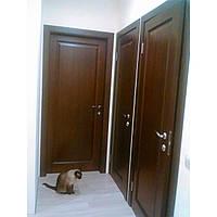Деревянные двери Модель S-9